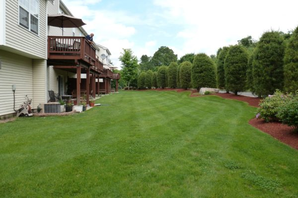 connecticut-condo-landscape-maintenance-001