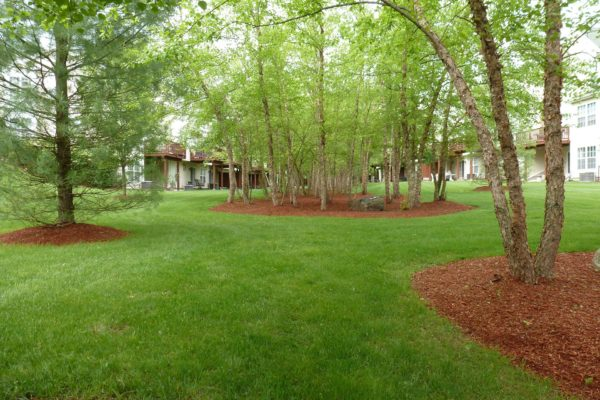 connecticut-condo-landscape-maintenance-002