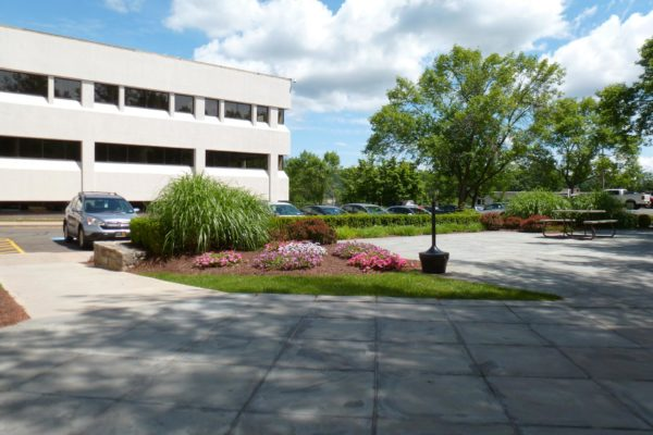 danbury-commercial-landscape-maintenance-003