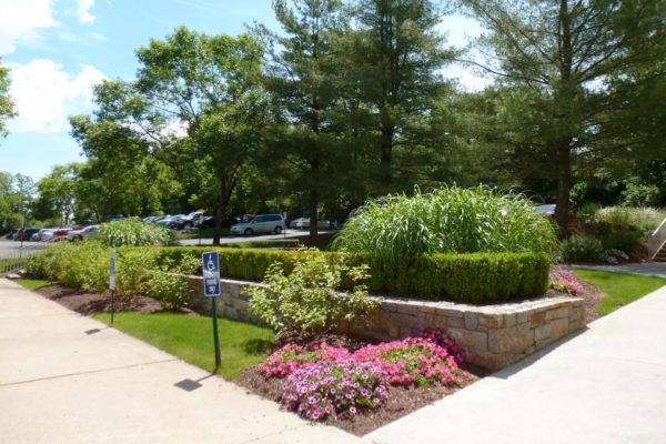 danbury-commercial-landscape-maintenance-004