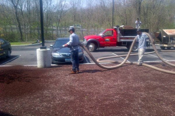 danbury-commercial-landscape-maintenance-008