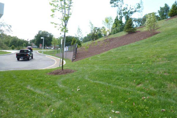 danbury-commercial-landscaping-008