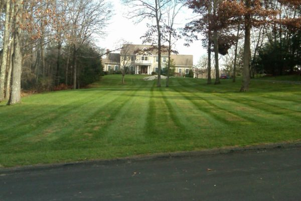 danbury-lawn-mowing-002