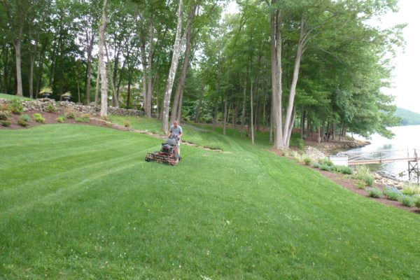 danbury-lawn-mowing-005