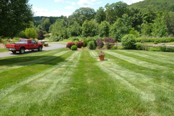 danbury-lawn-mowing-008